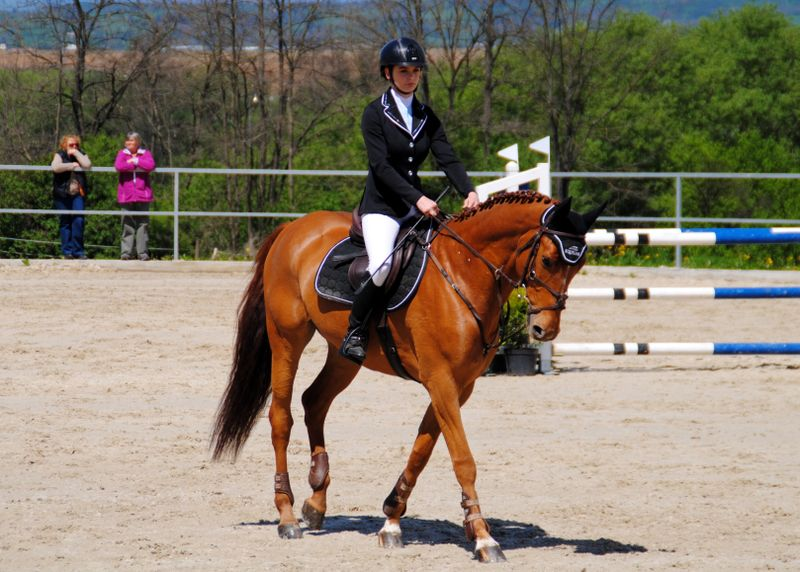 horse-riding-equipment