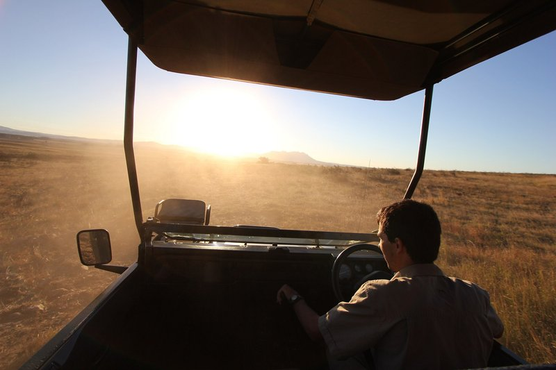 game-drive-africa