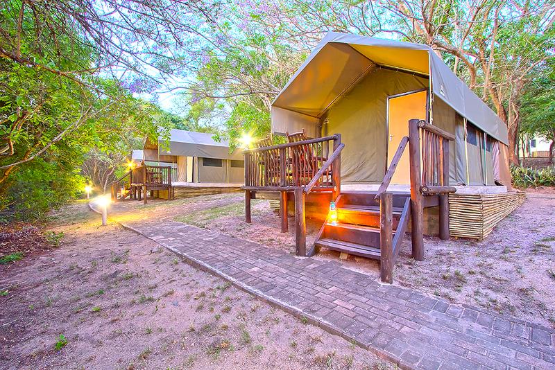 safari campsites