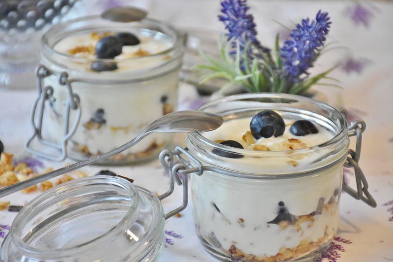 yogurt-healthy-gut
