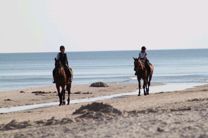 UK beach riding