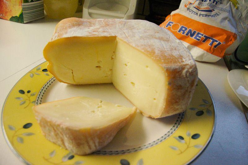 nasal-cheese-transylvania
