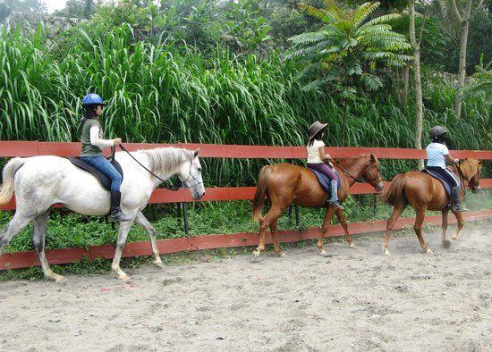 Children horse riding at Havana Horses