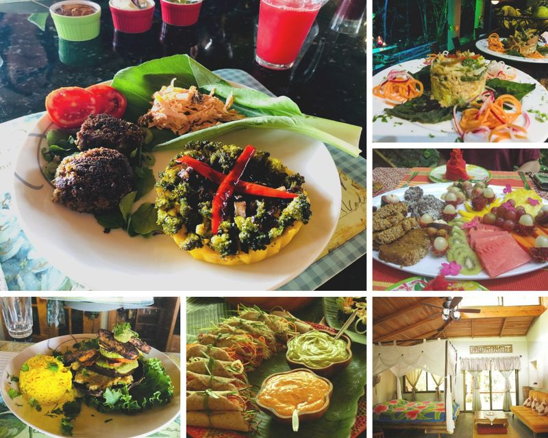 6 Day Vegan Cooking Holiday in Costa Rica