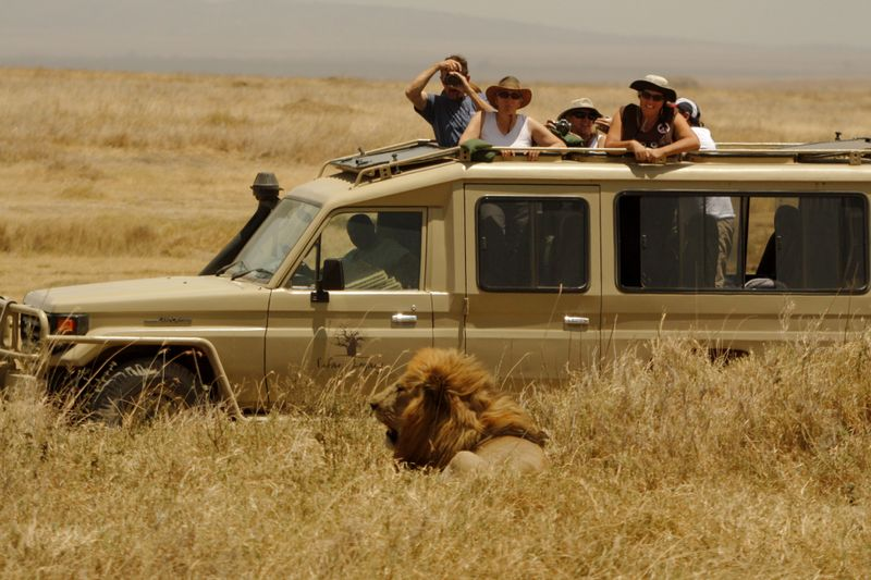 People on a Jeep Safari in Africa