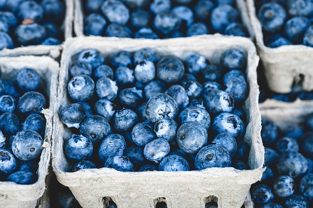 Foods that all Yogis & Non-Yogis Should Eat: blueberries