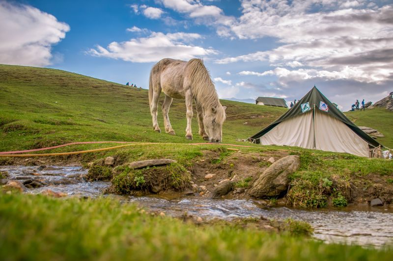 horse-riding-camping-trips