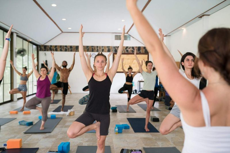 yoga retreat for beginners in tree pose