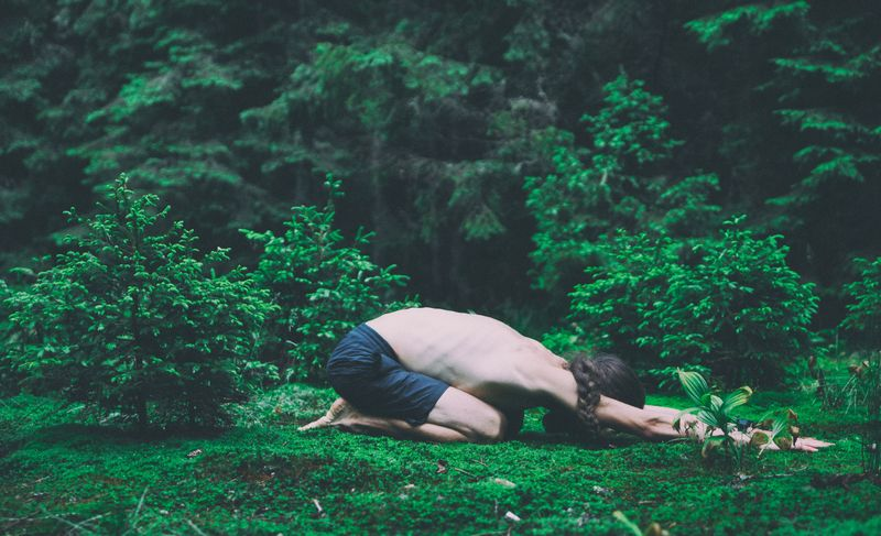 yoga-forest
