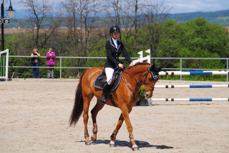 beginner-horse-rider
