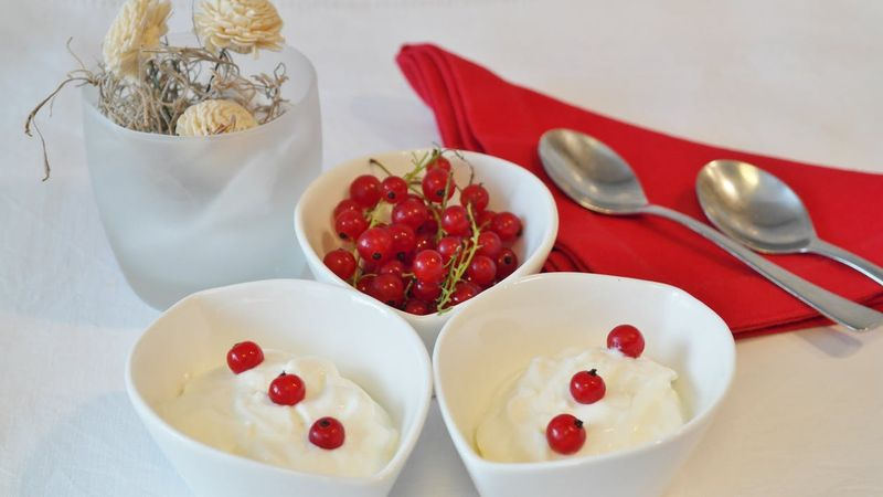 yogurt and red currants bowls breakfast