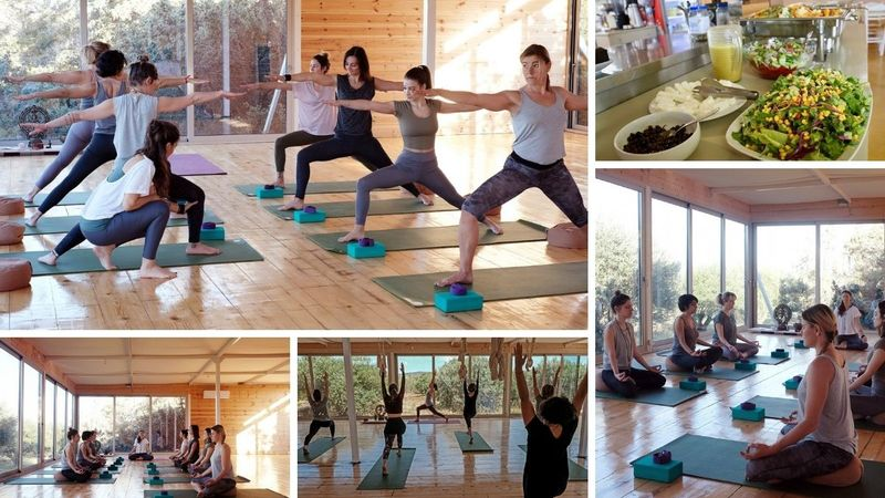 28 Day 200-Hour Yoga Teacher Training Hatha Yoga Alignment & Ayurveda Immersion in Naousa, Cyclades