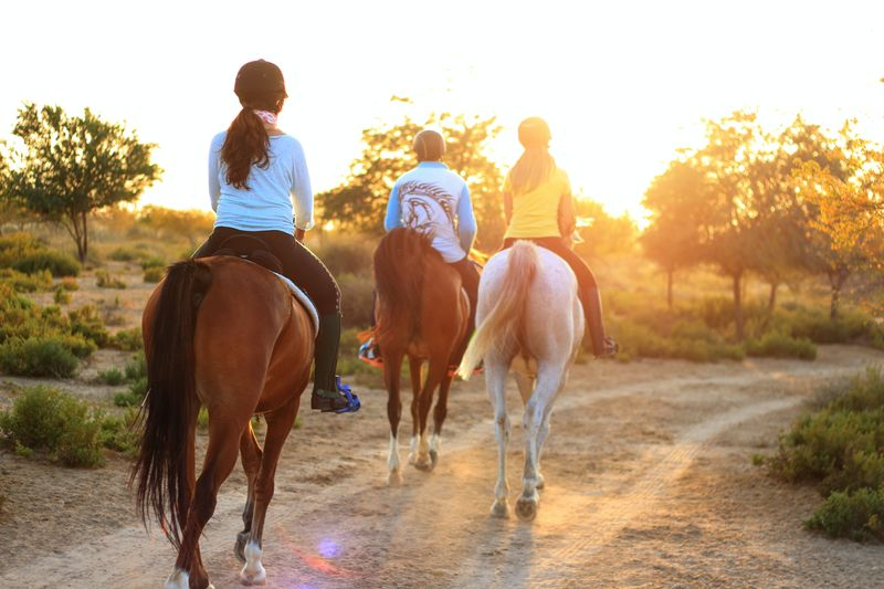 horse-riding-walking