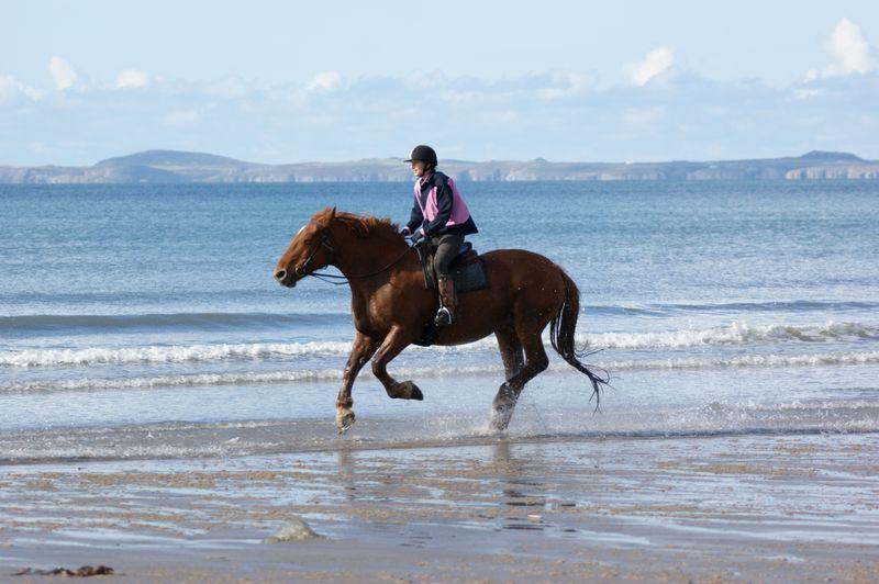 horse-riding-pembrokeshire-wales