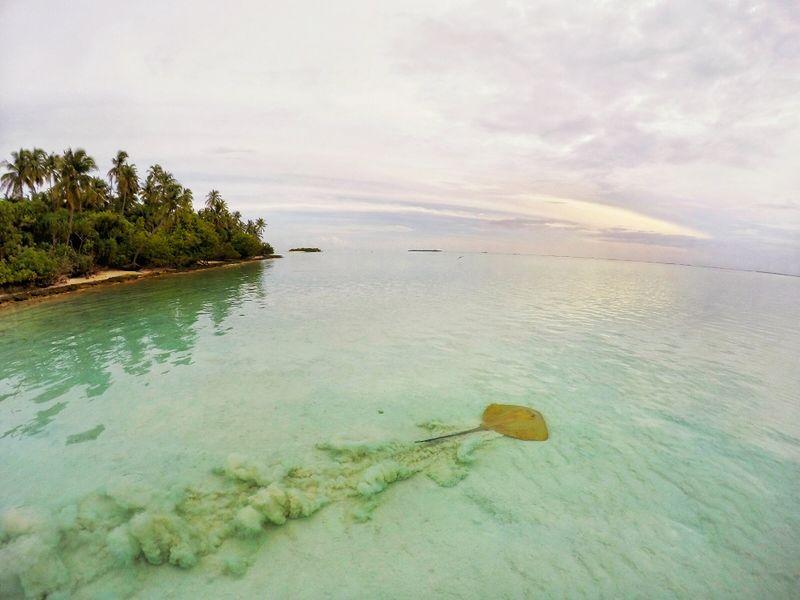 meemu-atoll-maldives