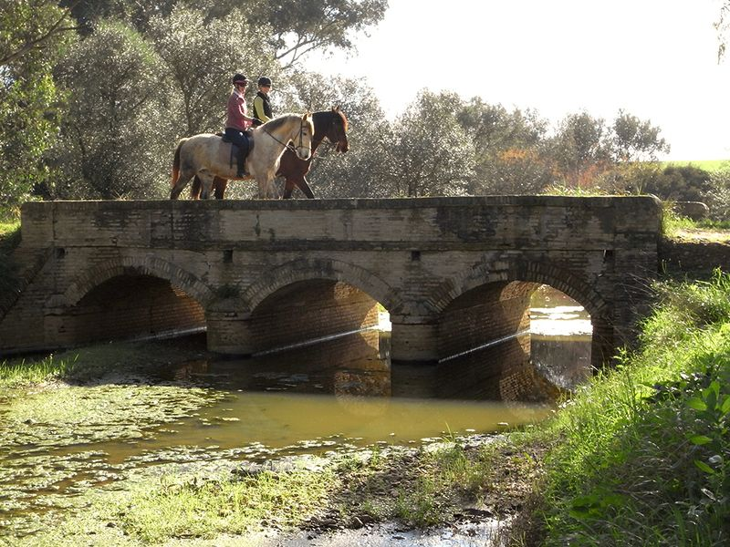 horse riding holiday golden triangle andalusia