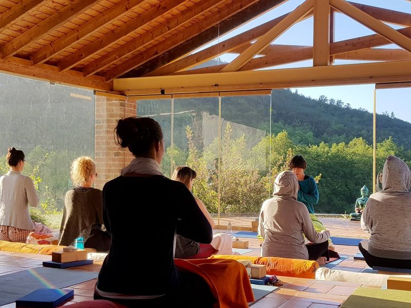 persons meditating in portugal