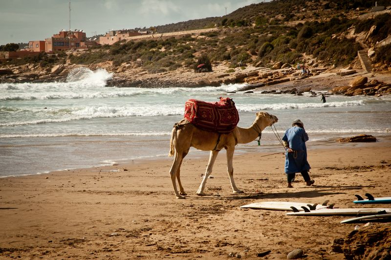 surfing-morocco