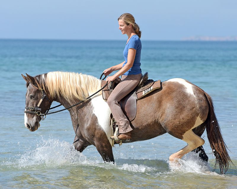 horse riding holidays Algarve