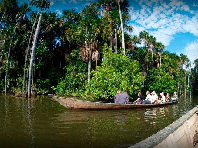 people on boat in jungle river