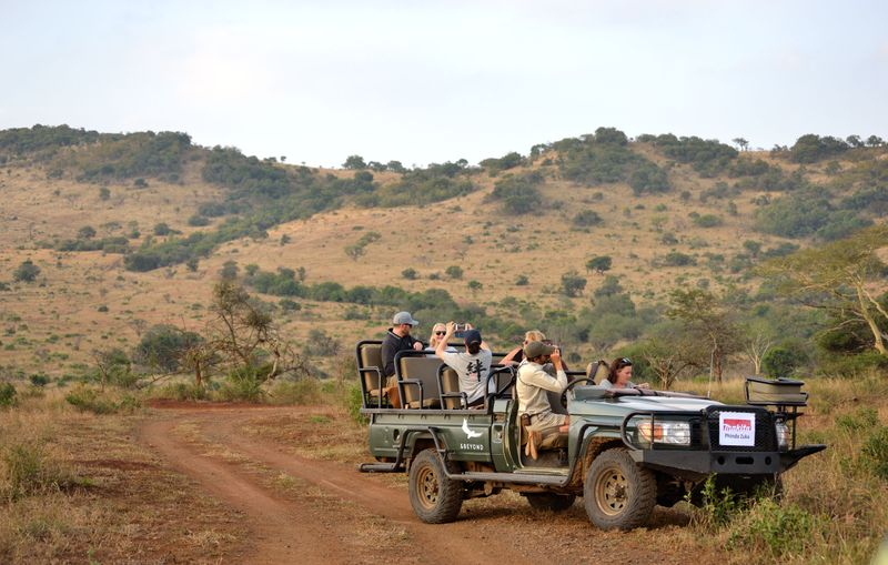 a safari group on a game drive