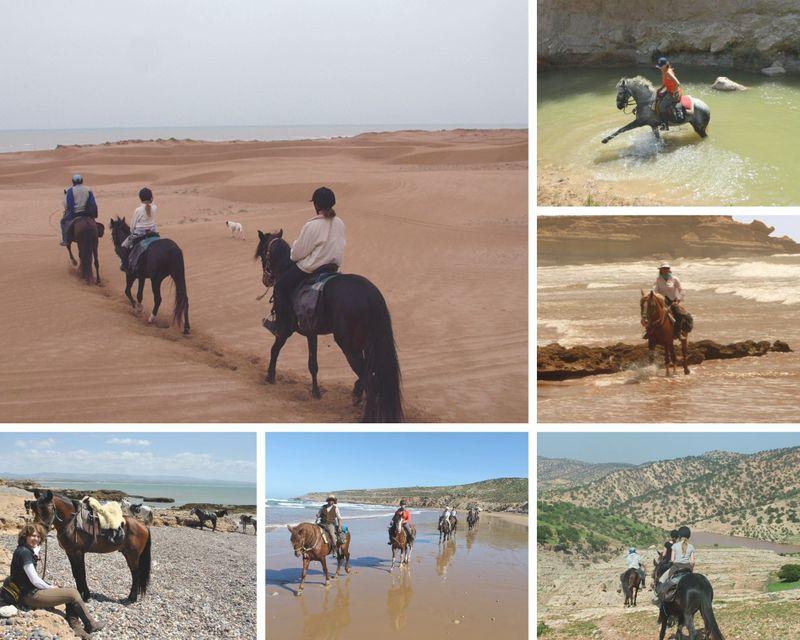 horse-riding-holiday-essaouira-morocco