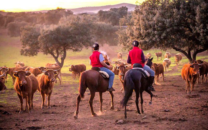horse-riding-extremadura
