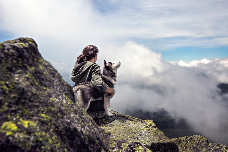 hiking-with-dog