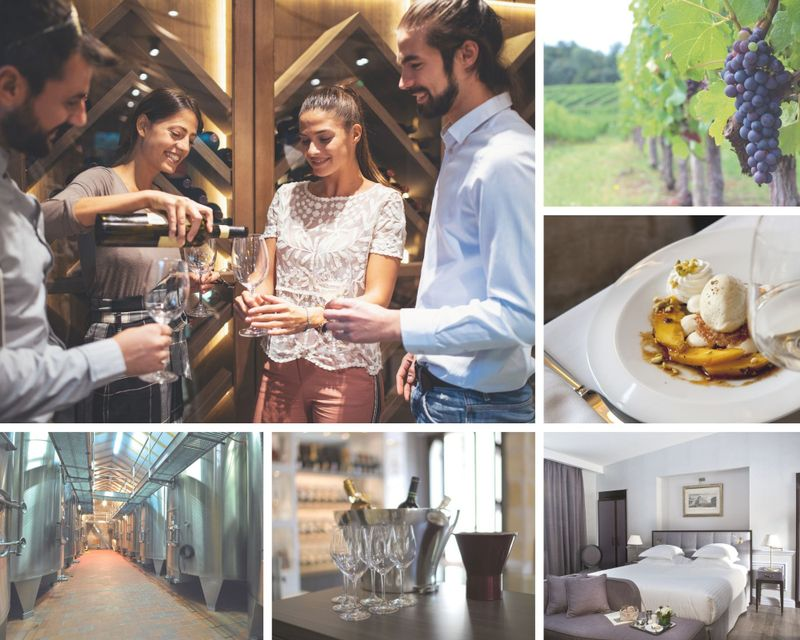 5 Day Grands Crus Wine Tour in Bordeaux, France