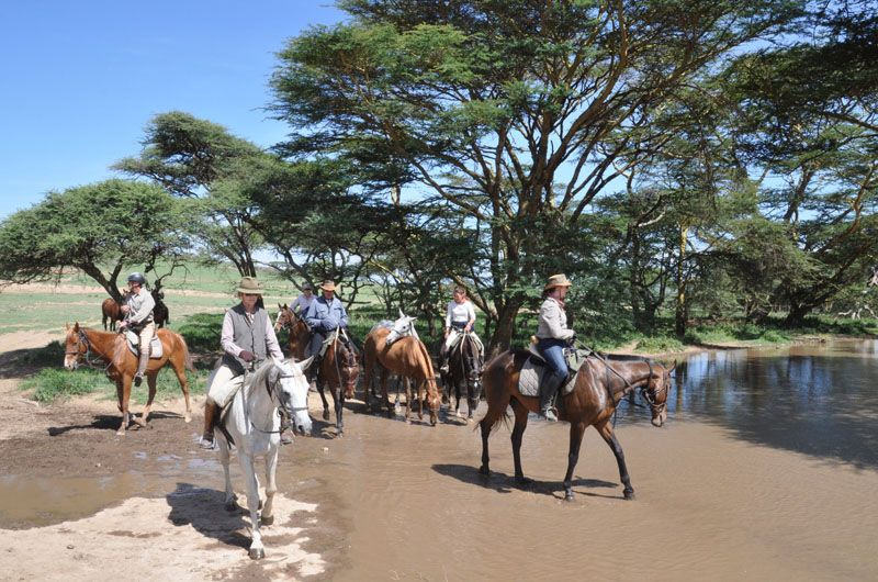 Tanzania horse riding holiday