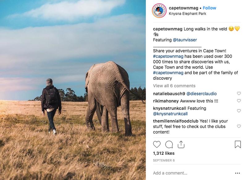 Big Five Safaris in Cape Town