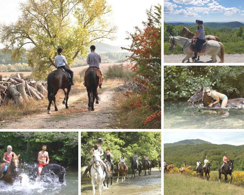 affordable-horse-riding-holiday-tuscany