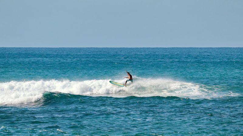 surf-laniakea-north-shore-oahu