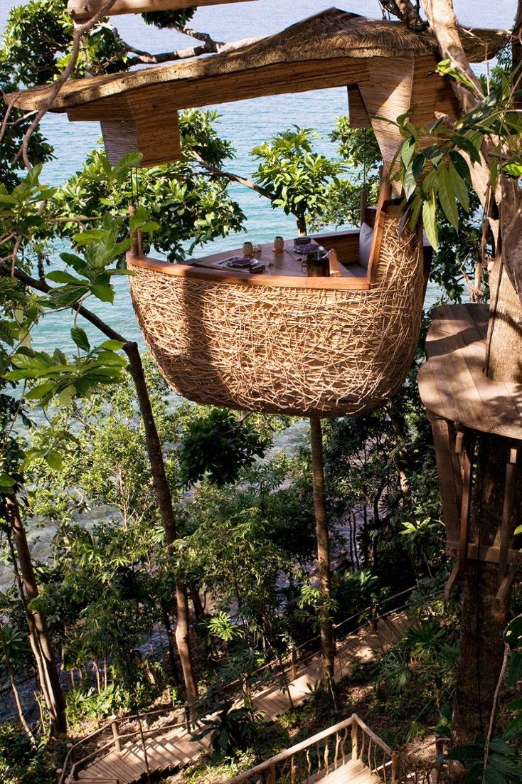 birds nest-restaurant-thailand