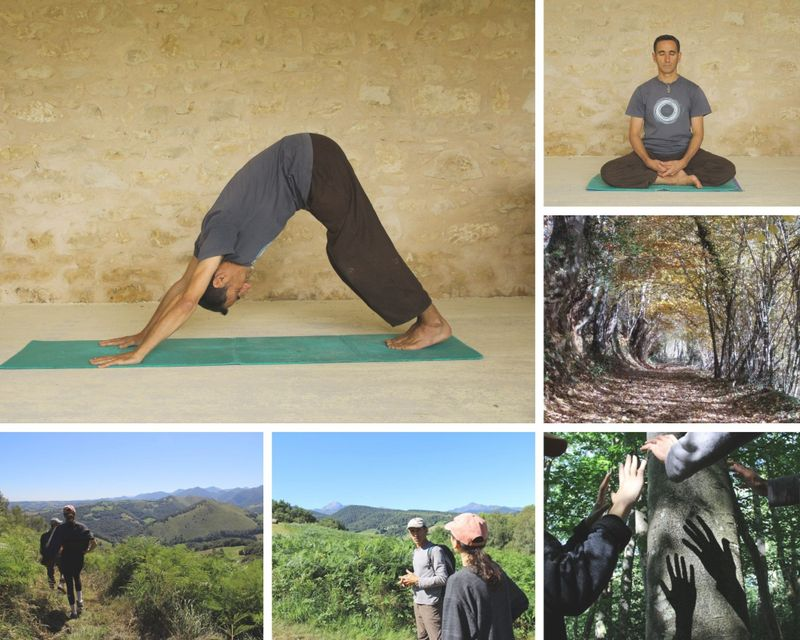 5 days rejuvenation stay in nature with meditation and yoga in Lies, Pyrenees