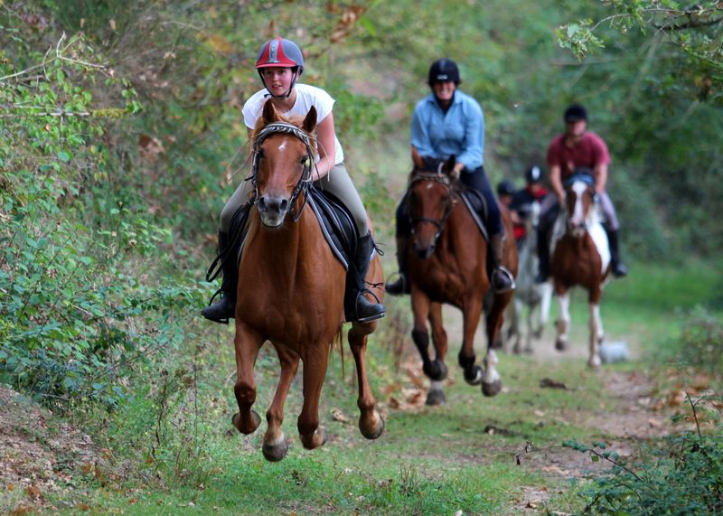 types-trail-riding-holidays